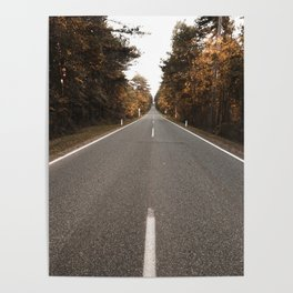 Road in the autumnal forest Poster