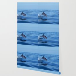 Spotted dolphin jumping in the Atlantic ocean Wallpaper
