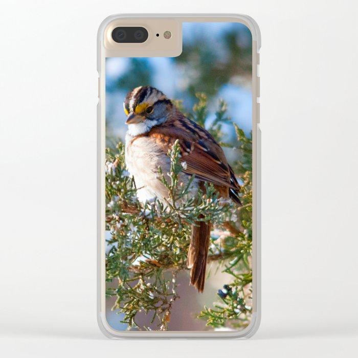 Sunlight Sparrow Clear iPhone Case