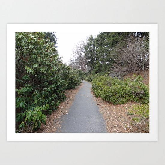 The Path Less Taken Art Print