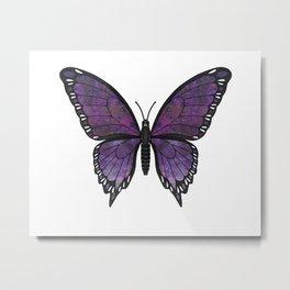 purple vanessa (Vanessae purpura) Metal Print