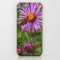 Butterfly on Aster iPhone 6s Slim Case