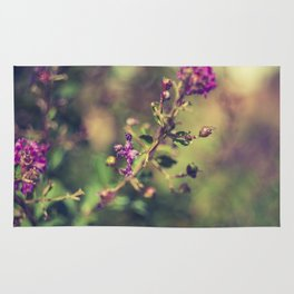 Purple wild flowers Rug