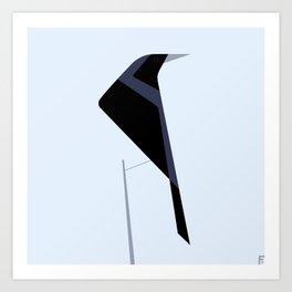 Tordo / Austral blackbird Art Print