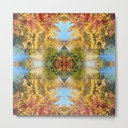 A beautiful Fall day in the woods.... Metal Print