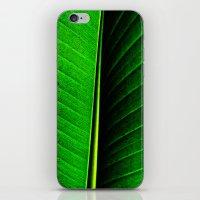 leaf iPhone & iPod Skins featuring Leaf by Melanie Ann