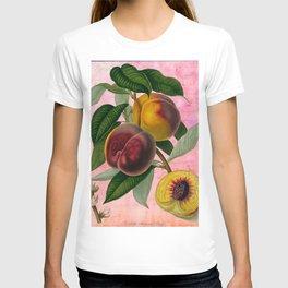 Vintage Botanical Collage, Bradford Peach T-shirt