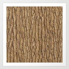 Bark of Elm Art Print