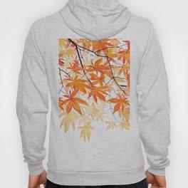 orange maple leaves watercolor Hoody