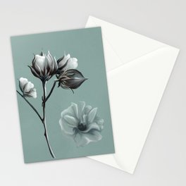 Cotton Blossom Stationery Cards