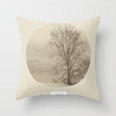 Winter Americana III Throw Pillow