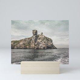 Irish rocks landscape Mini Art Print
