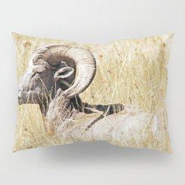 Rocky Mountain Bighorn Pillow Sham