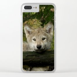 Timber wolf pup Clear iPhone Case