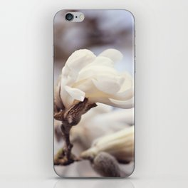 Magnolia Flower iPhone Skin