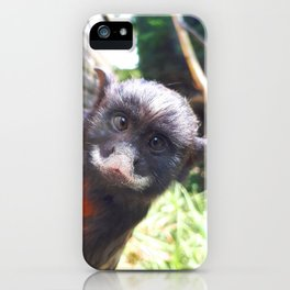 White-lipped tamarin monkey iPhone Case