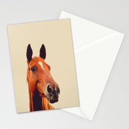 Horse of Eagle Crest  Stationery Cards