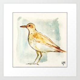 Waiting Bird Art Print