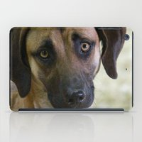 the hound iPad Cases featuring Hound Pup by IowaShots