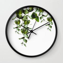 Eucalyptus green branches Wall Clock