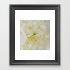 Cream peony Framed Art Print
