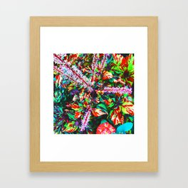 Shrubs Framed Art Print