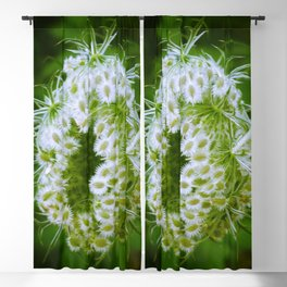 Green Closing Queen Anne's Lace Blackout Curtain