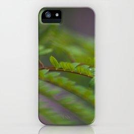 Jacaronda Mimosifolia Serie 1 No. 5 iPhone Case