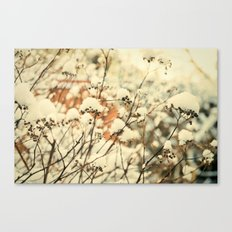 Vintage bush in the Snow Canvas Print