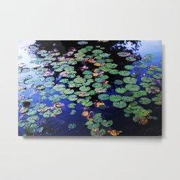 paramecium pond Metal Print