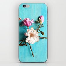 Flowers of Spring iPhone & iPod Skin