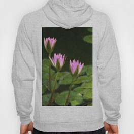 Summer At The Pond Hoody