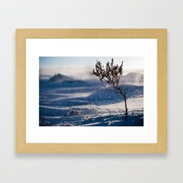 A little chilly. Framed Art Print