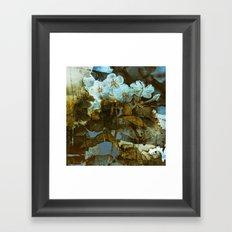 Fower in winter Framed Art Print