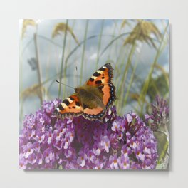 Butterfly Days Metal Print