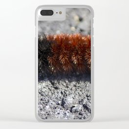 Banded Woolly Bear Caterpillar Clear iPhone Case