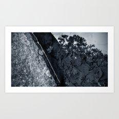 'REFLECTING STREAM' Art Print