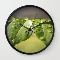 Fresh Dew Drops Wall Clock
