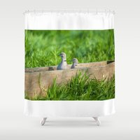 pigeon Shower Curtains featuring pigeon by Marcel Derweduwen