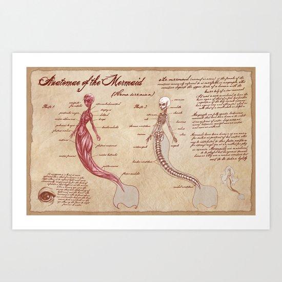 Anatomy of the Mermaid Art Print