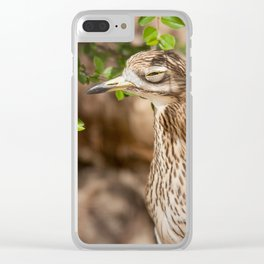 Not sure if serious.. Clear iPhone Case