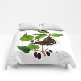 Mourning Cloak Butterfly Comforters
