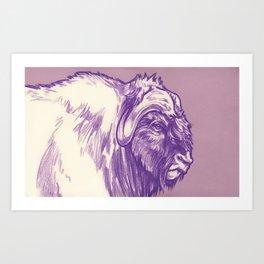 Musk Ox, Purple Art Print