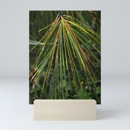 Sappy Multicolor Pine Needles Mini Art Print
