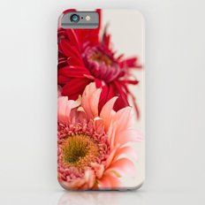 Spring simplicity Slim Case iPhone 6s