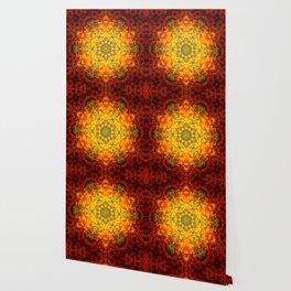 Beauty Wallpaper