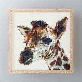 Baby Giraffe Framed Mini Art Print