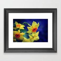 Spring Flower 01 Framed Art Print