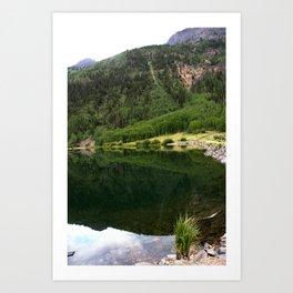 Row of Aspens on Crystal Lake Art Print