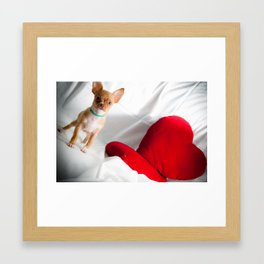 Heart & Chihuahua Framed Art Print